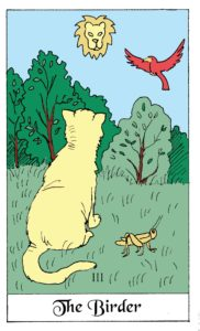 The Birder Cat card from the White Cat Oracle Deck by David Borden. Cat Divination.