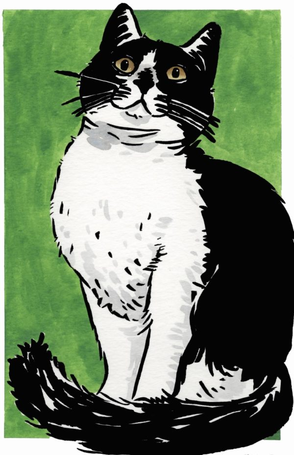 Green Cat poster by Ruby Borden