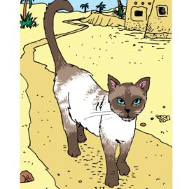 The Journey: A Six Card Reading from the White Cat Oracle
